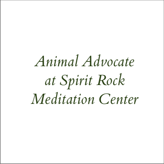 Animal Advocate at Spirit Rock