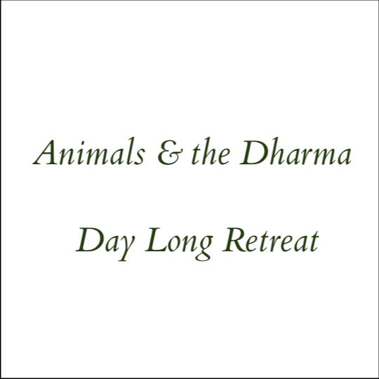 Animals & the Dharma - Day Long Retreat