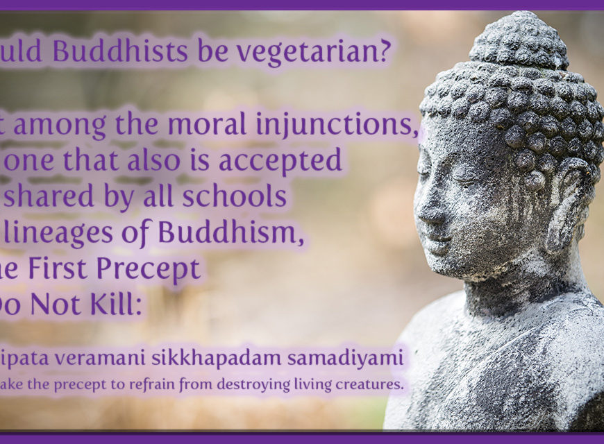 Should a buddhist be a vegetarian?